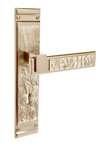 ANIMAL SKIN lever handle on a backplate