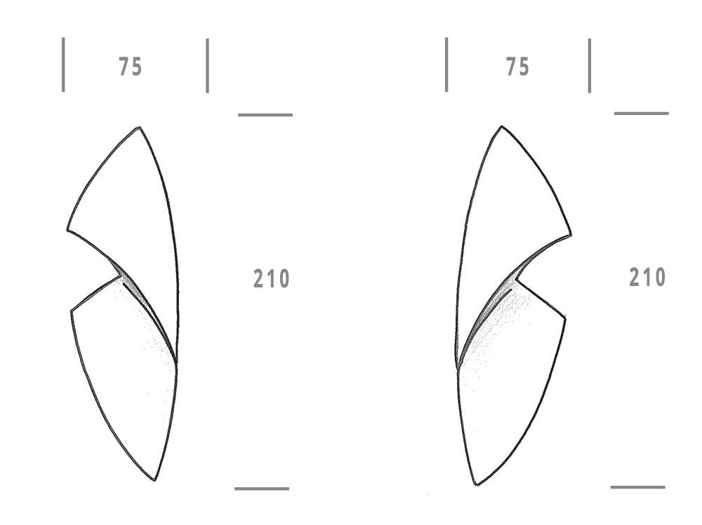 plaque chrysalide